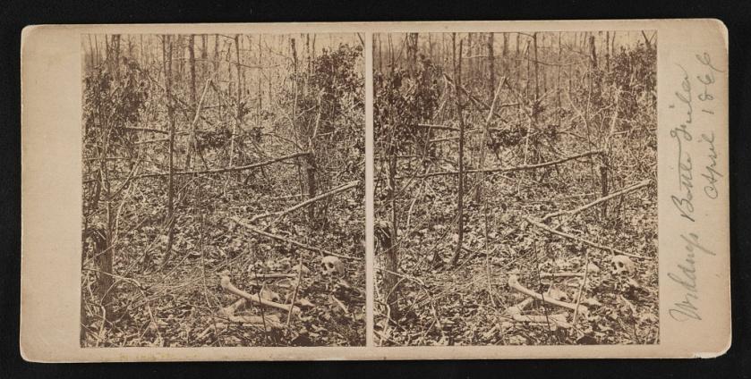 wilderness 1866
